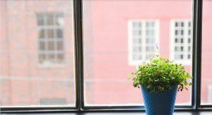 Les fenêtres en PVC, en bois ou en aluminium