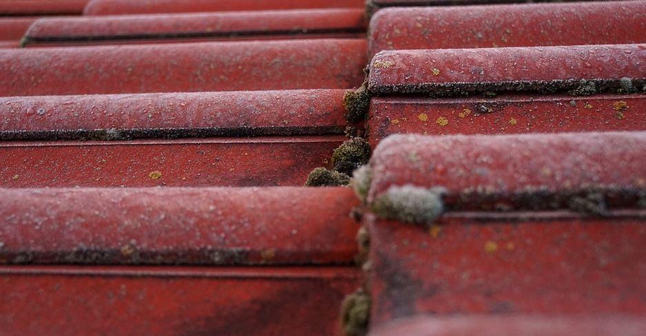 You are currently viewing Le nettoyage et l'entretien de la toiture